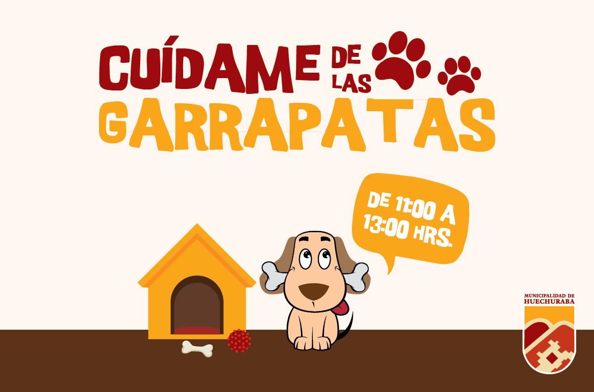 Comienza campaña preventiva para desgarrapatizar perros en la comuna