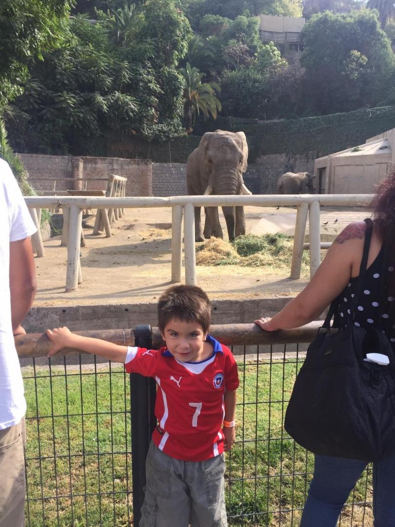 Zoológico Metropolitano.